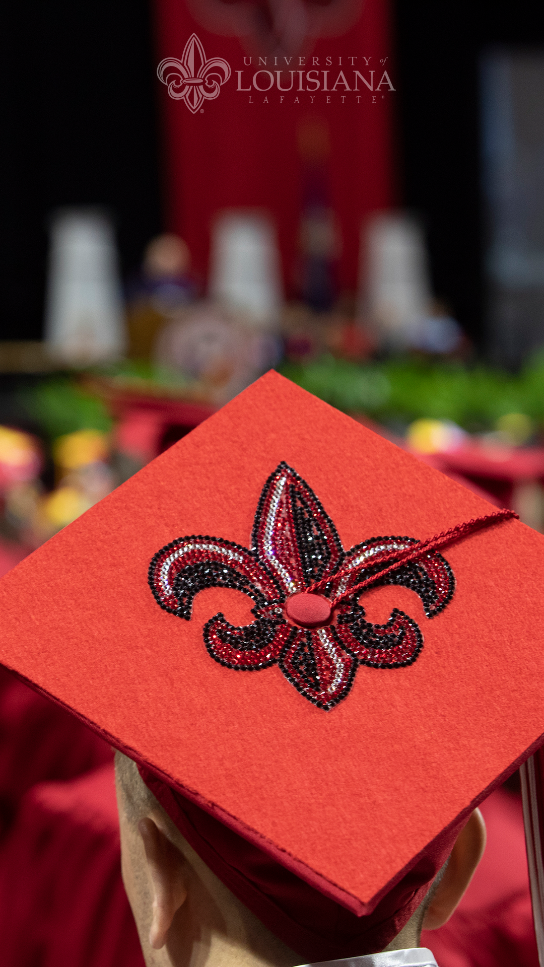 Photo of the back of a graduate's mortarboard with the UL Lafayette fleur-de-lis embellishment on it.